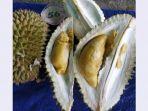 durian-noa_20180727_214016.jpg