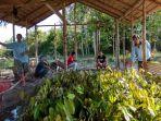 durian_20180726_130154.jpg