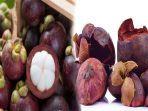hasil-samping-buah-manggis-buah-manggis-obat-diabetes-ini-5-manfaat-buah-manggis-untuk-kesehatan.jpg