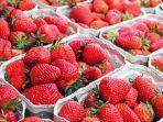 ilustrasi-strawberry-11222.jpg