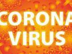 inilah-yang-terjadi-saat-tubuh-terinfeksi-virus-corona-simak-penjelasan-ahli-hingga-peluang-sembuh.jpg