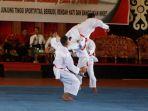 karateka_20180223_152611.jpg