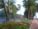 kebakaran-hutan_20180916_195836.jpg