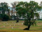 kematian-melonjak-drastis-saat-wabah-corona-10000-mayat-negara-ini-dimakamkan-di-pulau-kematian.jpg