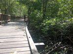 kerusakan-di-kawasan-wisatan-mangrove.jpg