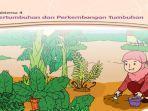 kunci-jawaban-tema-1-kelas-3-subtema-4-pembelajaran-1-pertumbuhan-dan-perkembangan-tumbuhan.jpg