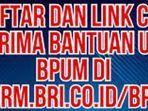 link-bantuan-umkm-login-httpseformbricoidbpum-daftar-umkm-login-wwwdepkopgoid-daftar.jpg