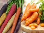 manfaat-dari-wortel-untuk-kesehatan-wortel-berkembang-biak-dengan-cara.jpg