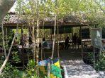 mangrove-park_20180401_165858.jpg