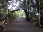 mangrove_20180410_115910.jpg