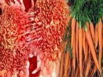 obat-kanker-alami-tanpa-operasi-wanita-ini-membuktikannya-dengan-minum-wortel-setiap-hari.jpg