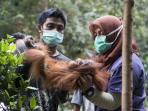 orangutan-3-tahun-2_20160908_161534.jpg