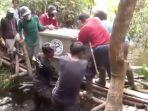 orangutan_20170719_191452.jpg