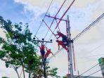 pangkas-pohon-dekat-jaringan-listrik.jpg