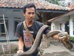 pawang-rentul-pawang-ular-saat-ditemui-di-rumahnya.jpg