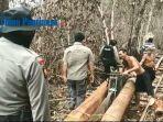 pekerja-tak-berkutik-saat-polisi-gerebek-aktivitas-diduga-ilegal-logging-di-kubu-raya.jpg