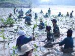 pln-bantu-mangrove_20180813_161321.jpg