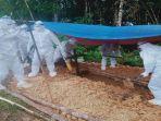 proses-pemakaman-jenazah-suspek-covid-19-di-kecamatan-ledo.jpg