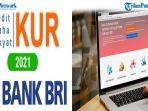 proses-pengajuan-pinjaman-kur-bri-2021-tanpa-jaminan-secara-online-login-httpskurbricoid.jpg