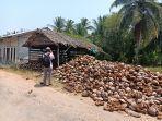 sarana-pengolahan-kelapa-milik-warga-di-kabupaten-mempawah.jpg