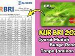 syarat-pinjaman-online-kur-kecil-bank-bri-login-httpskurbricoid-daftar-kur-bri.jpg