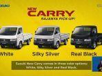 tampilan-warna-suzuki-new-carry-pick-up.jpg