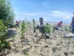 tanam-mangrove_20181031_122900.jpg