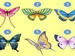 tes-kepribadian-kupu-kupu-yang-kamu-pilih-ungkap-sisi-tersembunyi-dari-kepribadianmu.jpg