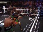 tinju-dunia-wilder-vs-ortiz-live-mola-tv-world-boxing-andrew-cancio-vs-rene-alvarado.jpg