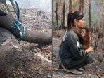 viral-foto-ular-dan-orang-utan-korban-kebakaran-hutan-di-kalimantan.jpg