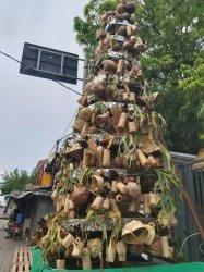 Unik! Pohon Natal di GMIT Kota Kupang Terbuat Dari Barang Bekas dan Pangan Lokal!