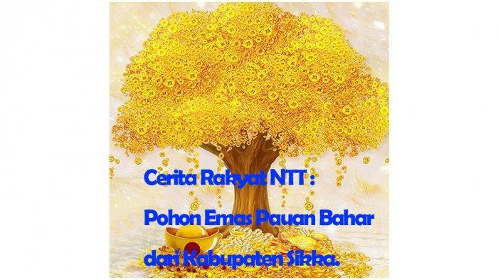 Cerita Rakyat NTT : Pohon Emas Pauan Bahar dari Kabupaten Sikka