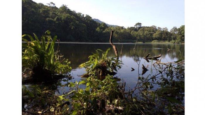 Danau Tiwu Sora yang Kental dengan Mistis, Ada Ikan, Belut dan Katak Emas