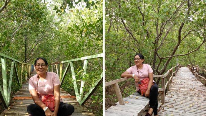 15 Manfaat Bakau atau Mangrove yang Luar Biasa Bagi Kehidupan Manusia