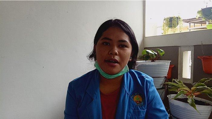 Mariana Priska, mahasiswa semester 4 prodi Teknologi Industri Hortikultura (TIH), Jurusan Tanaman Pangan Hortikultura (TPH), Politani Negeri Kupang