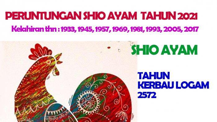 Shio Ayam dimiliki oleh mereka yang lahir Tahun : Tahun Lahir: 1933, 1945, 1957, 1969, 1981, 1993, 2005, 2017