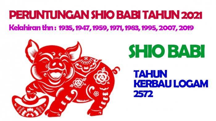 Shio Babi dimiliki oleh mereka yang lahir Tahun : 1935, 1947, 1959, 1971, 1983, 1995, 2007, 2019