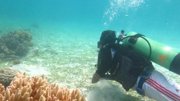 Taman Wisata Perairan Kapoposang di Provinsi Sulawesi Selatan, Indonesia