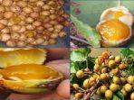 Buah Kusambi atau Kesambi atau Kosambi, Buah Khas di Nusa Tenggara Timur (NTT)