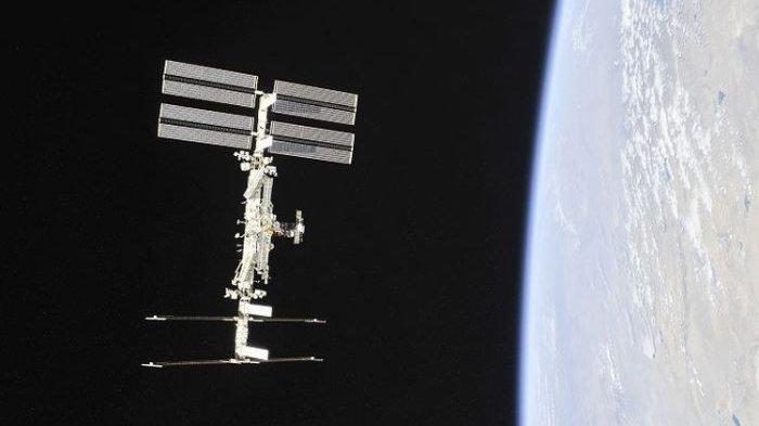 Untuk Apa NASA Kirim Beruang Air dan Cumi ke Luar Angkasa?