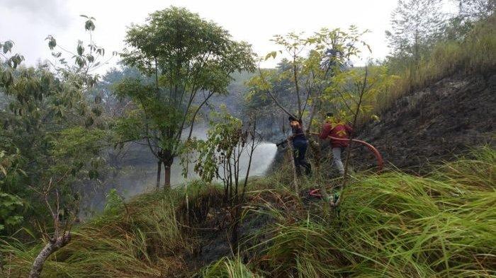 Kebakaran Lahan di Panggoi Bikin Warga Sempat Panik