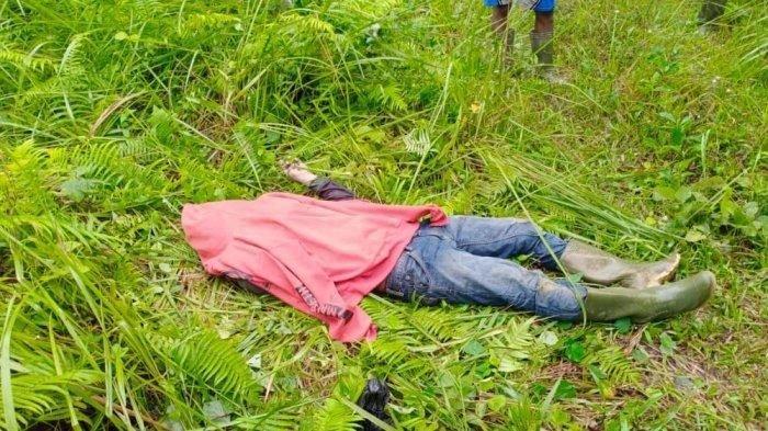 Seorang Pria Ditemukan Meninggal di Kebun Sawit