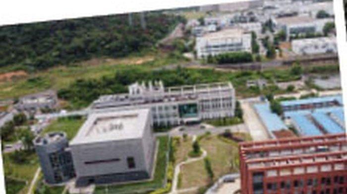Dicurigai, Ada 50 Lab Rahasia di Cina Memproduksi Senjata Biologis
