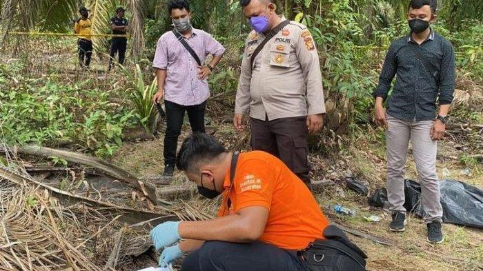 Sakit Hati, Karyawan Perkebunan Sawit Bunuh Remaja 14 Tahun