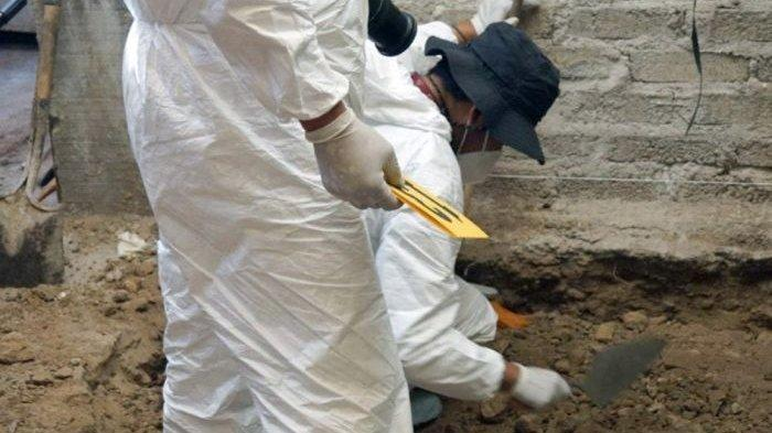 Tukang Daging Diduga Bunuh 17 Wanita, Ditemukan 3.787 Tulang Manusia di Rumahnya
