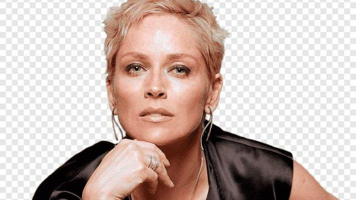 Sharon Stone Dibohongi Sutradara Basic Instinct untuk Adegan Vulgar