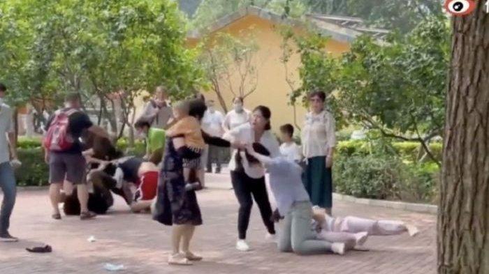 Lihat Pengunjung Berkelahi, Penghuni Kebun Binatang pun Ikut Baku Hantam