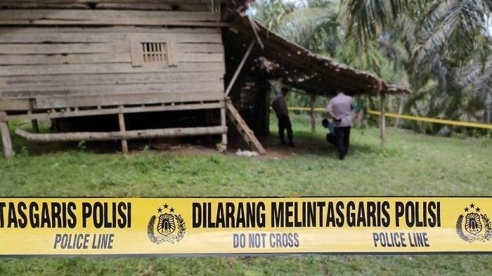 Diduga Karena Bunuh Diri, Mayat Pria Ditemukan Dalam Sebuah Pondok Kebun Sawit di Aceh Utara