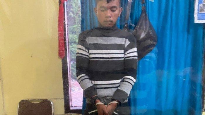 Seorang Pemuda di Taput, Diringkus Polisi Saat Lagi Mengisap Ganja