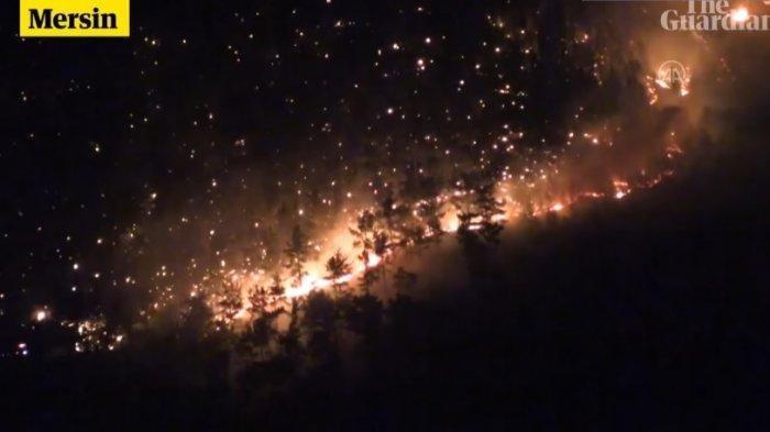 Disebut Layaknya Neraka, Kebakaran Hutan Turki Dinilai Paling Parah Selama 19 Tahun Terakhir